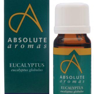 Absolute Aromas Eucalyptus GlobulusT109