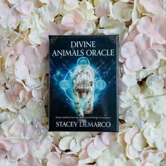 Divine Animals Oracle